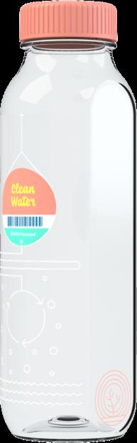 Water_Coral_4 sticker